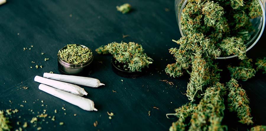 consumo-de-cannabis